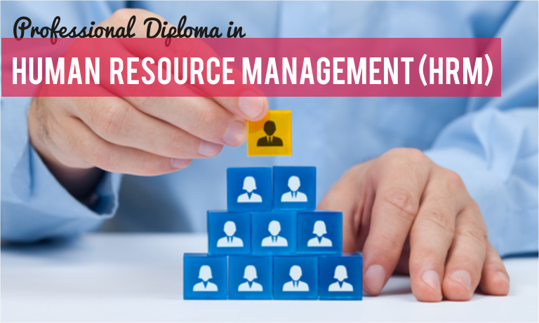 Professional Hrm Human Resource Management Institute